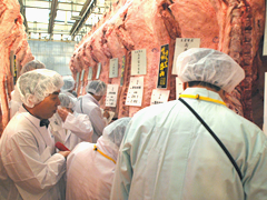 信州牛生産販売イメージ