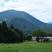信州の緑と山々に囲まれた牧場